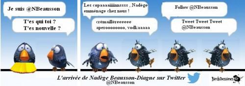l'arrivée de Nadège sur twitter.jpg