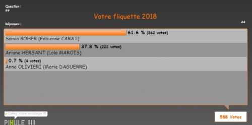 sondage fliquette 2.jpg